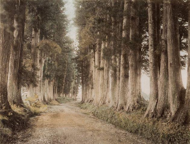 Út Nikkó felé (1880 körül)