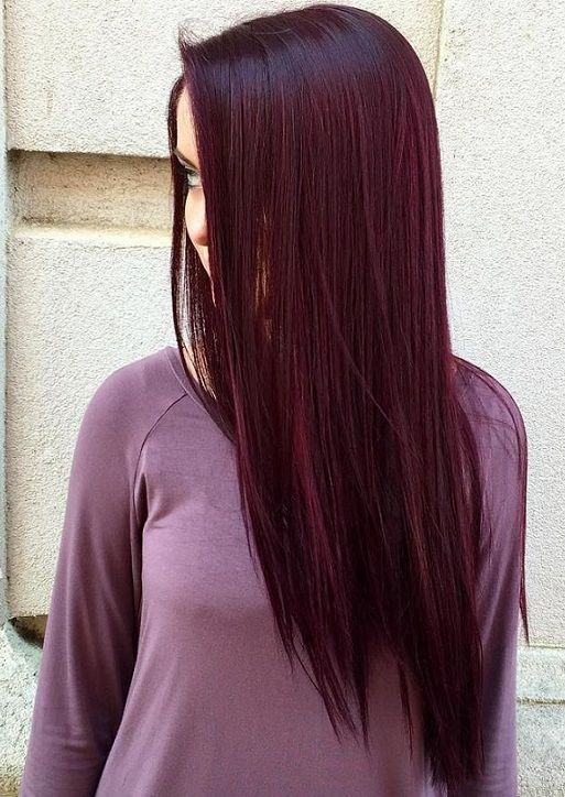 Best 25 Dark Burgundy Hair Ideas On Pinterest Dark