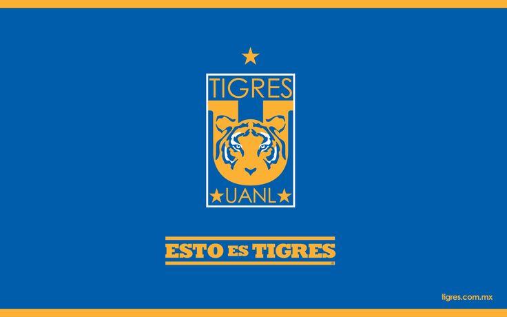¡Esto es Tigres!