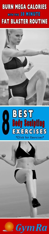 30 Minute Fat Blaster Workout Routine