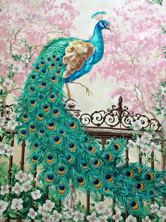17 Best Ideas About Peacock Fabric On Pinterest Peacock