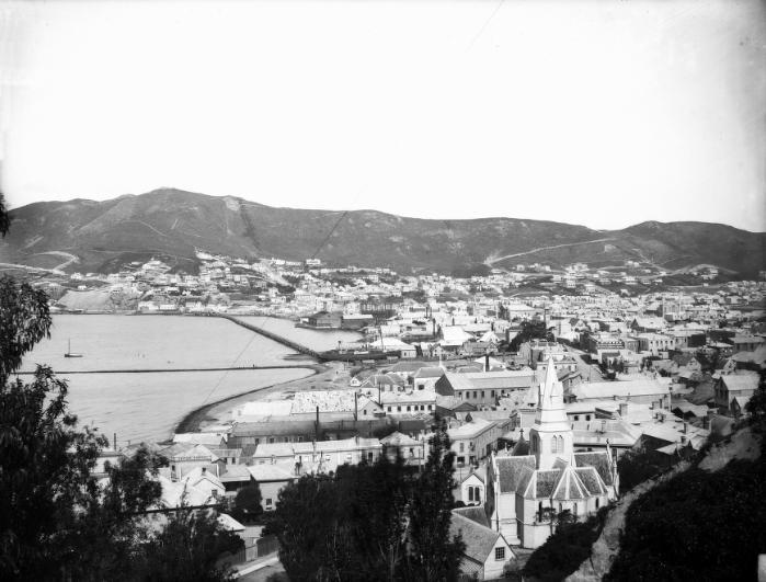 http://townbelt.wellington.net.nz/images/historic_te_aro_1883_001.jpg
