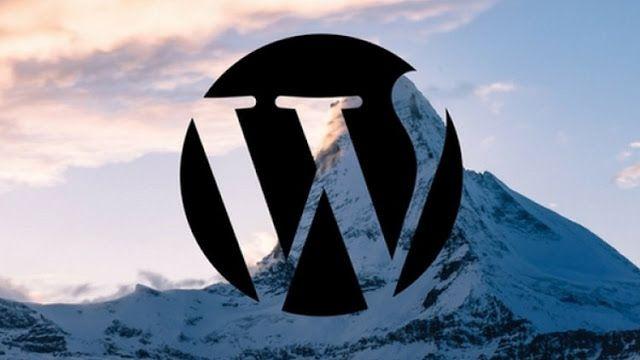 How to Create a Wordpress Portfolio Website   udemy 100