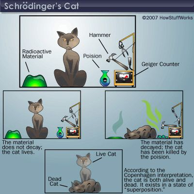 Schrodinger's cat helped illustrate a seemingly paradoxical reading of Heisenberg's uncertainty principle. A cat is hidden in a box. A random process either kills the cat or doesn't. Until an observer opens the box to look, the cat is both alive and dead.