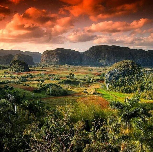 The 25 Best Cuba Vinales Ideas On Pinterest Vinales Cuba Trips And Cuba Travel