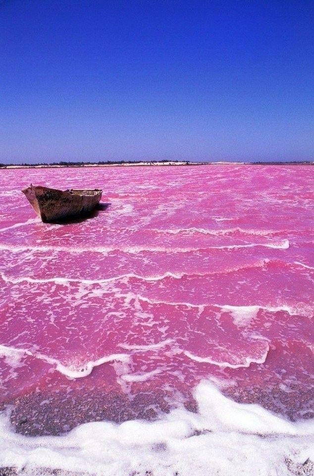 Розовое озеро в Австралии Необычная природа