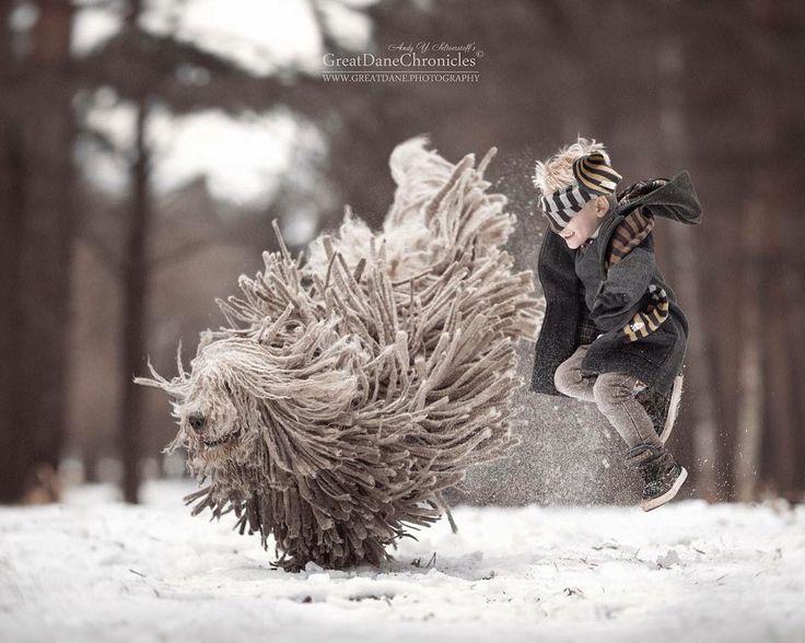 Deze prachtige fotoreeks toont de unieke relatie tussen kleine kinderen en hun grote honden