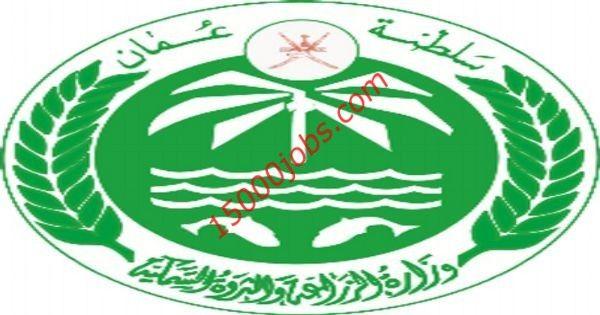 شعار جامعة حائل