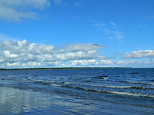 Mira Gut Beach, Cape Breton