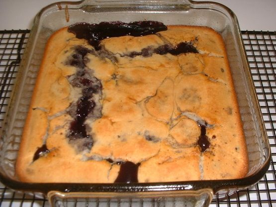 Make and share this Easy Bisquick Cobbler recipe from Food.com.