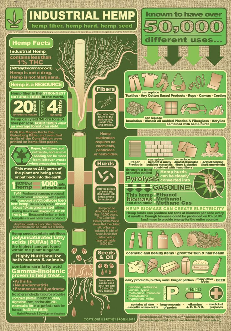 Facts about and uses of Industrial Hemp #infographic