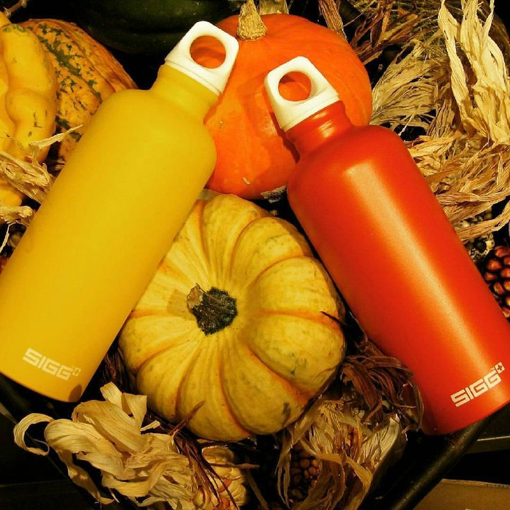 Happy first day of Fall!  SIGG Elements bottles are not only functional, but come in beautiful fashion forward colors! - photo via @siggswitzerland