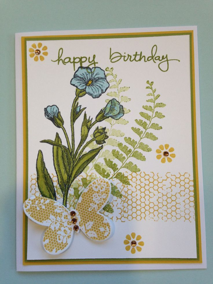 141 best images about stampin' up butterfly basics