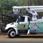 Tree Service In Northern Virginia, Fairfax, Arlington, Alexandria #Fairfax #tree #removal http://property.nef2.com/tree-service-in-northern-virginia-fairfax-arlington-alexandria-fairfax-tree-removal/  # Tree Stump Removal Pruning Trimming Emergency Tree Removal Tree and stump removal can be an expensive and potentially dangerous proposition if you try and undertake it yourself. So trust the experts at Absolute Tree, Inc. a full-service tree maintenance company that serves all of Northern VA…