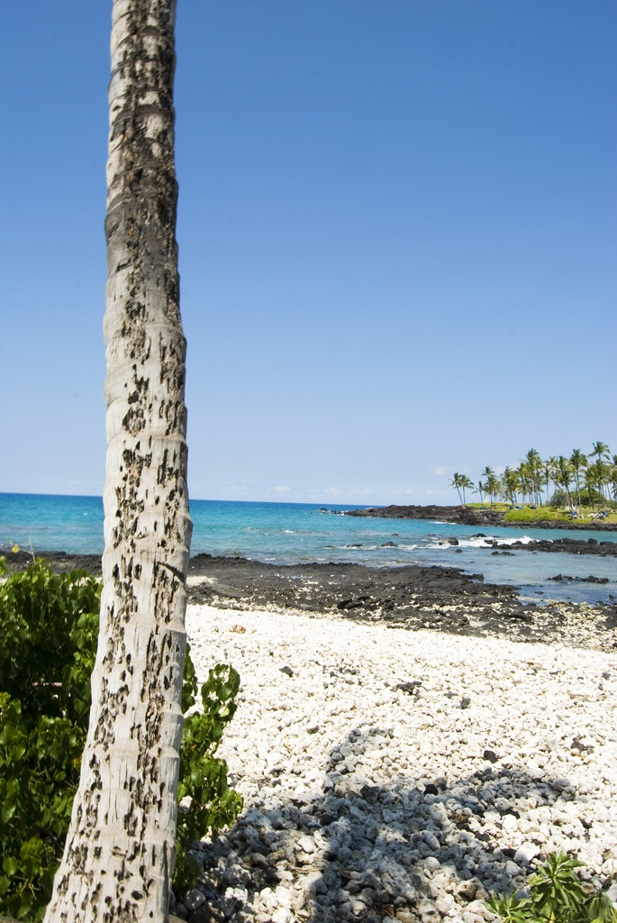 Big Island Hawaii rocks! #travel