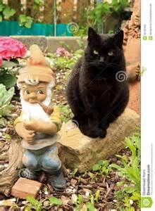 black kittens in gargen - Yahoo Image Search Results