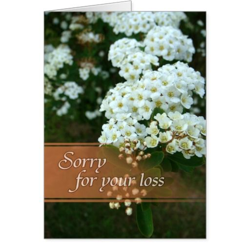 Best 25+ Sorry Cards Ideas On Pinterest