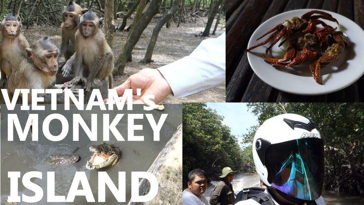 Vietnam Travel - amazing MONKEY ISLAND in Can Gio 2014.