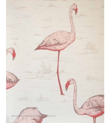 Cole and Son Flamingos (Engelska Tapetmagasinet)