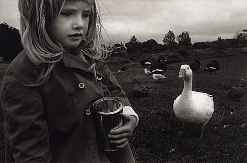 Bruce Foster - Auckland Art Gallery