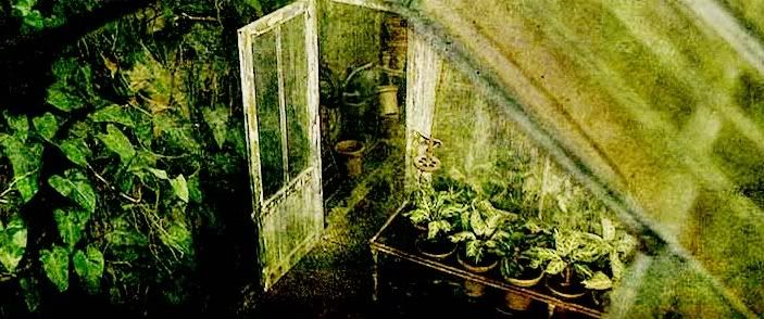 Herbology Greenhouses | Page 1 | RP Forum - Hogwarts Castle | Guild Forums | Gaia Online
