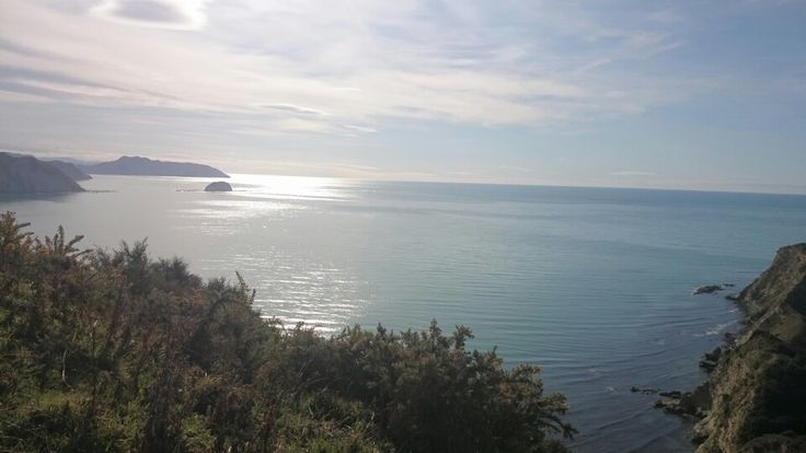 Cooks cove hike new Zealand