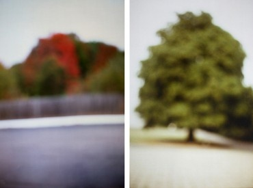 David Armstrong - Parking Lot with white line, Tree (diptych)