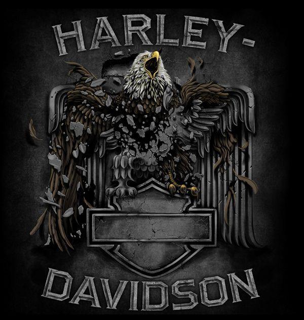 Harley-Davidson Illustrations
