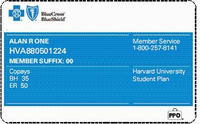 blue cross blue shield student health insurance plan