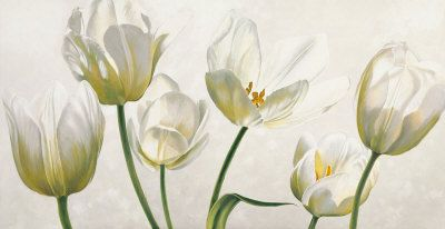 Tulips, Prints and Posters at Art.com