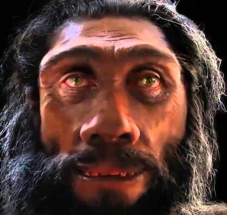 Vývoj člověka za posledních 6 milionu let vzhled obličeje od pračlověka ...