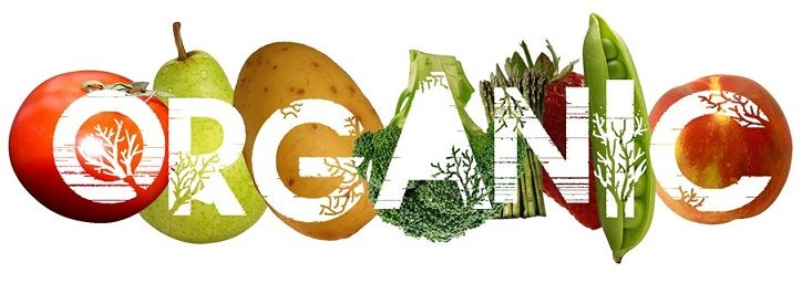 Organic+Food+Products | organic food, why organic food is better, benefits of going organic