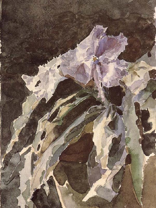 Orchid 1886-87 Mikhail Vrubel