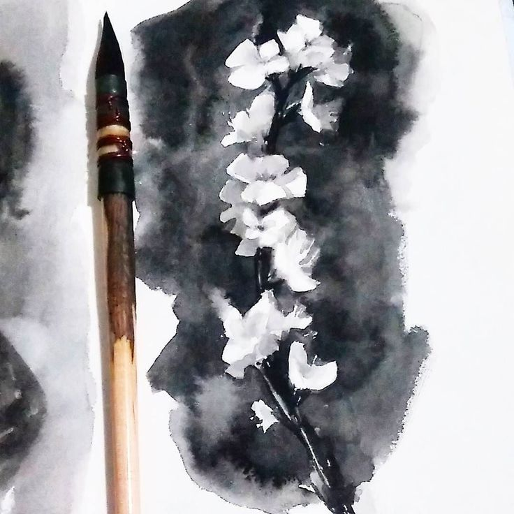 Sakura branch  arches hot pressed paper :) #watercolor #study #sakura #cherry #blossom #painting #flower #blackandwhite