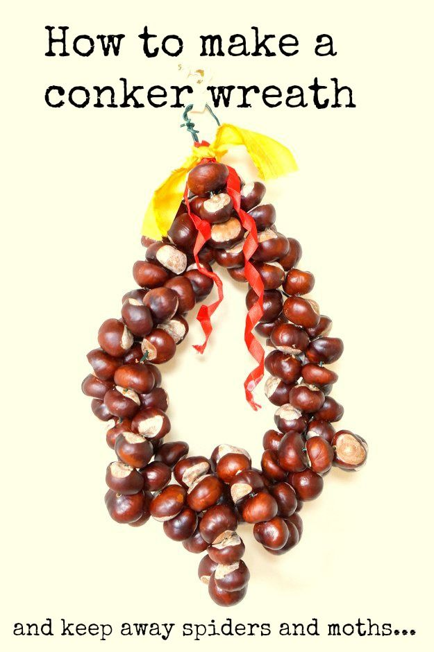 Conker wreaths make a beautiful Autmumal way to brighten up your door or hallway, I love spiders, but the rest of my family are petrified of them. Conkers are meant to keep them away. Did you know they also have moth repellent properties? Perfect for protecting your wardrobe.