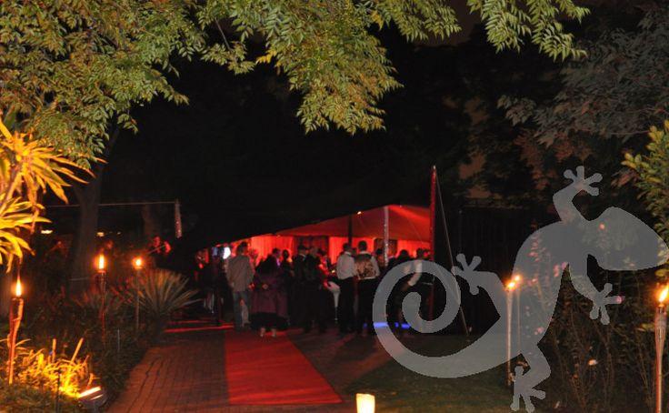 Moulin Rouge, decor, house party