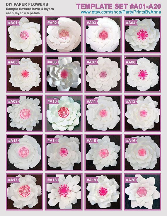 Printable Pdf Paper Flower Templates Set Of 20 Printable Templates