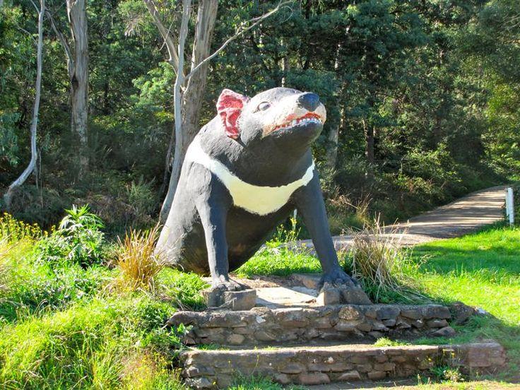 Big Tasmanian Devil