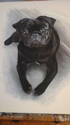 Cute pug painting ..cathcurrie.etsy.com