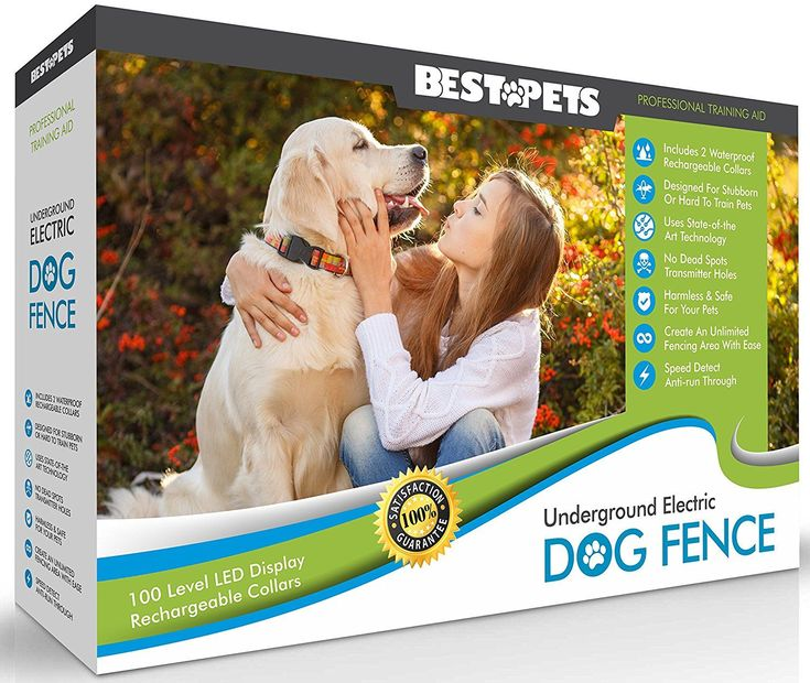 Wireless Underground Electric Dog Fence, Invisible, With 2 Shock Collars, Waterproof, Hidden System, In Ground, Perimeter Fence, Flags, Rechargable, For Small, Large Pets, Stubborn Pets, by Best Pets How to Install a PetSafe® Wireless Dog Fence Watch me t
