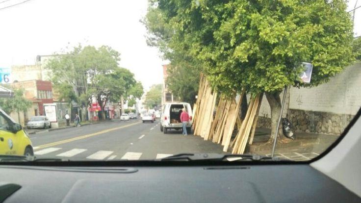 Según reporta el denunciante, todos los días tres camionetas sin placas invaden un carril de la vialidad, cerca de la Gasolinera Poza Rica, y ponen a la venta madera de ...