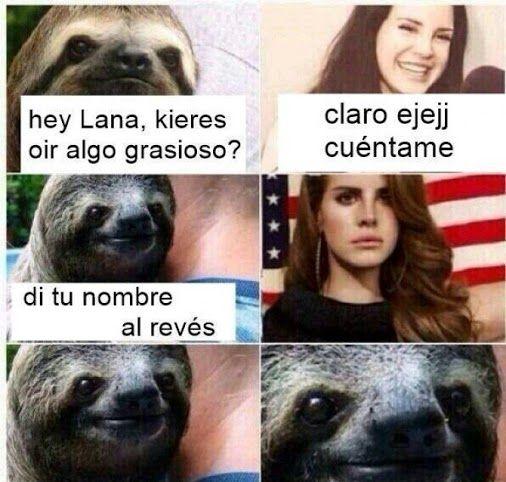 Este perezoso es un loquillo XdxDxd (no digan Lana al revés :v) Para más imágenes graciosas visita: https://www.Huevadas.net #meme #humor #chistes #viral #amor #huevadasnet