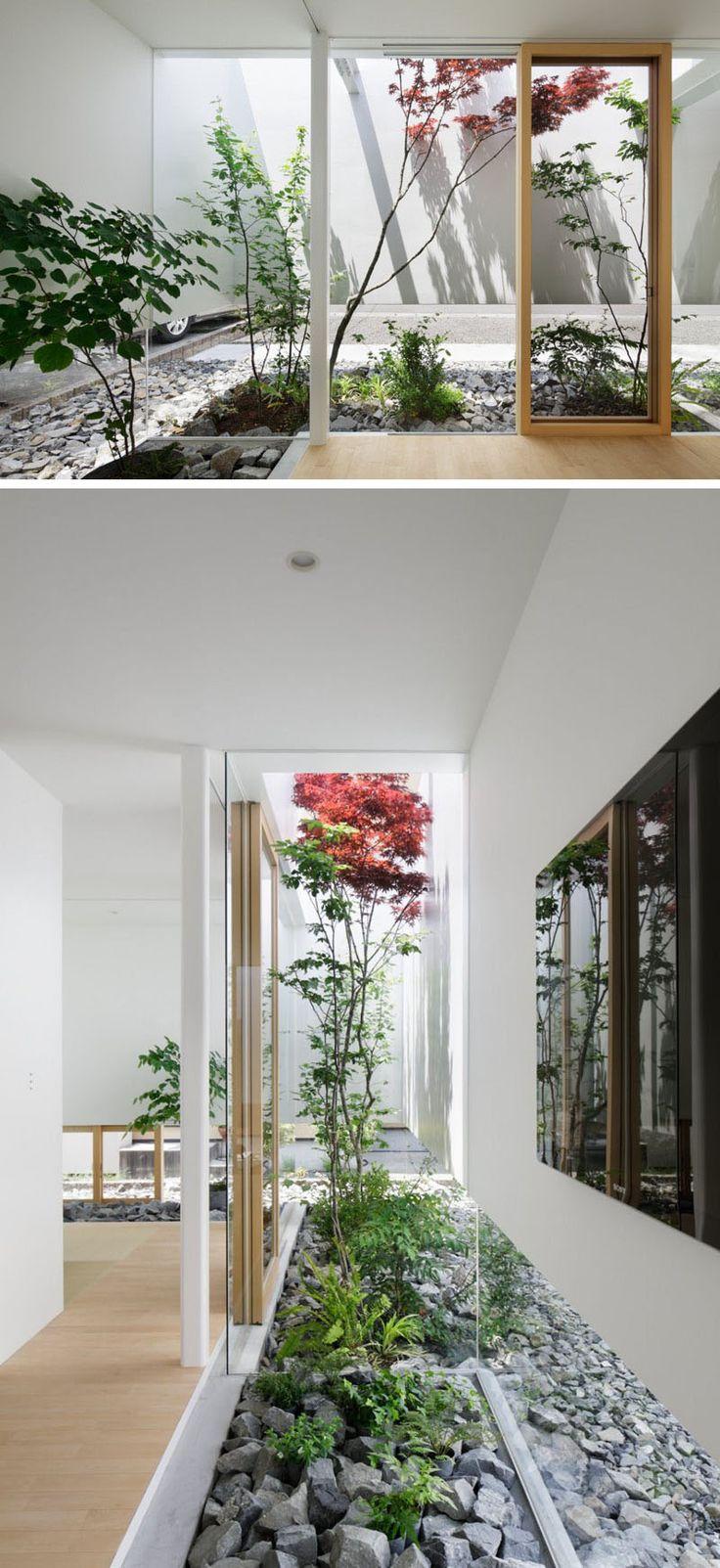 46 besten wohnung pflanzen bilder auf pinterest pilze garten und g rtnern. Black Bedroom Furniture Sets. Home Design Ideas