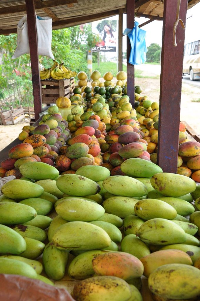 Fruitstal in Suriname