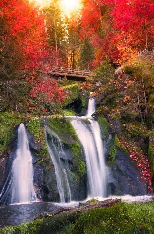 Black Forest Waterfall, Triberg, Germany  #Waterfall #Germany #reversehomesickness.com http://reversehomesickness.com