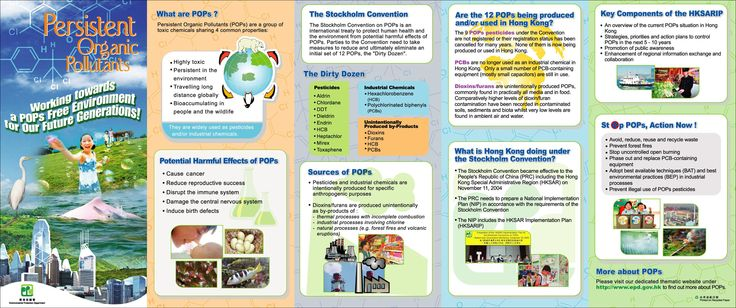 leaflet_Eng.jpg (2954×1240)