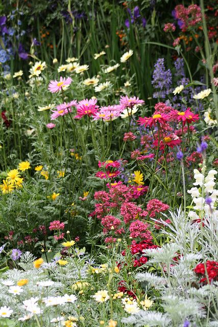 We're excited for the Chelsea Flower Show - London