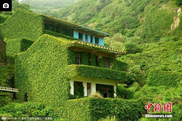 Houses covered with tendril climbing plants are seen on a deserted village in Zhoushan, East China's Zhejiang province on May 31, 2015. Description from english.sina.com. I searched for this on bing.com/images