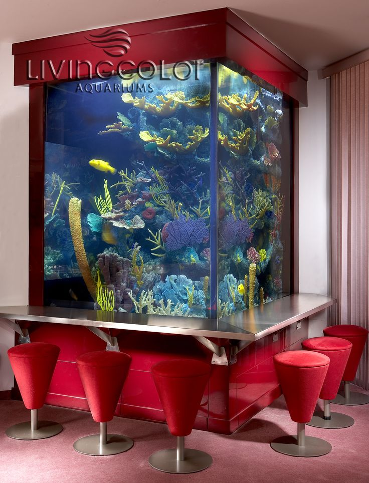 21 Best Living Color Aquariums Residential Images On