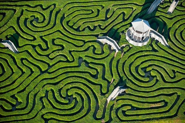 Maze at Longleat, England